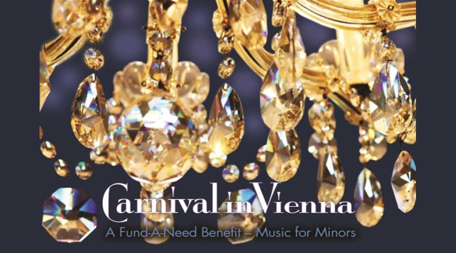 Carnival in Vienna Fundraiser